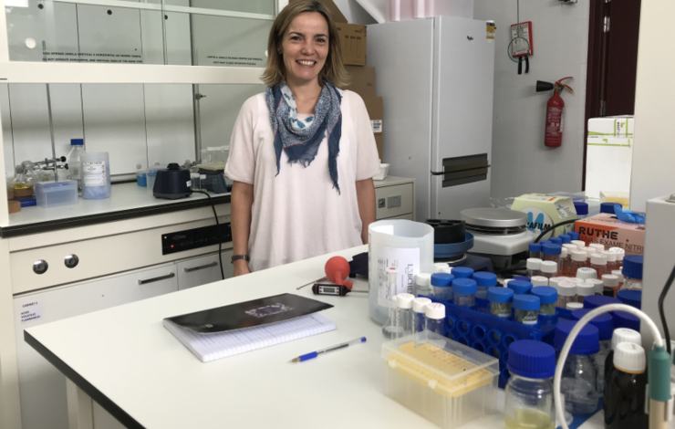 New COST Action on Green Chemistry coordinated by Ana Rita